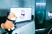 OPPO完成全球首个3D结构光5G视频通话